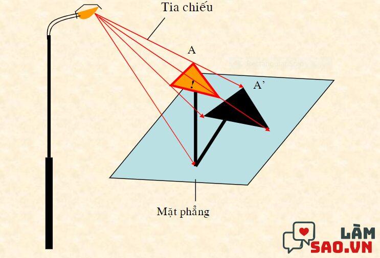 Ví dụ về hình chiếu